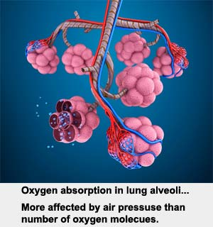 Oxygen Absorption affected by Air Pressure